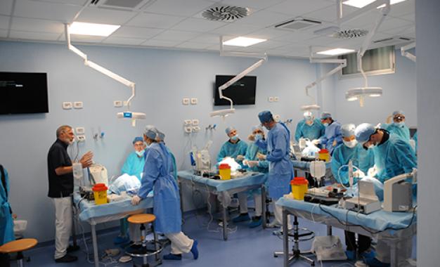 Corso di anatomia chirurgica inaugura <br>il nuovo settorato di Brescia: <br>la fotogallery