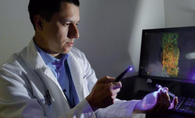 Una ricerca in vitro apre l&#8217;era <br>dell&#8217;endodonzia rigenerativa