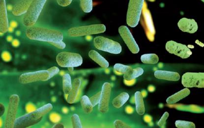 Orange complex, svelato  il microbioma della perimplantite
